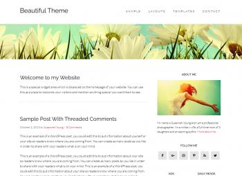 Beautiful Theme by StudioPress